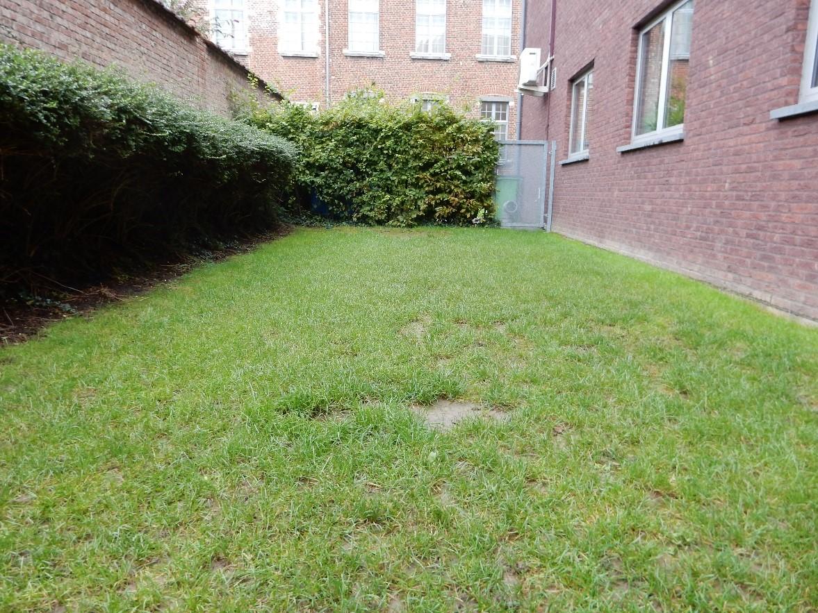 tuin BR voor de werken 3