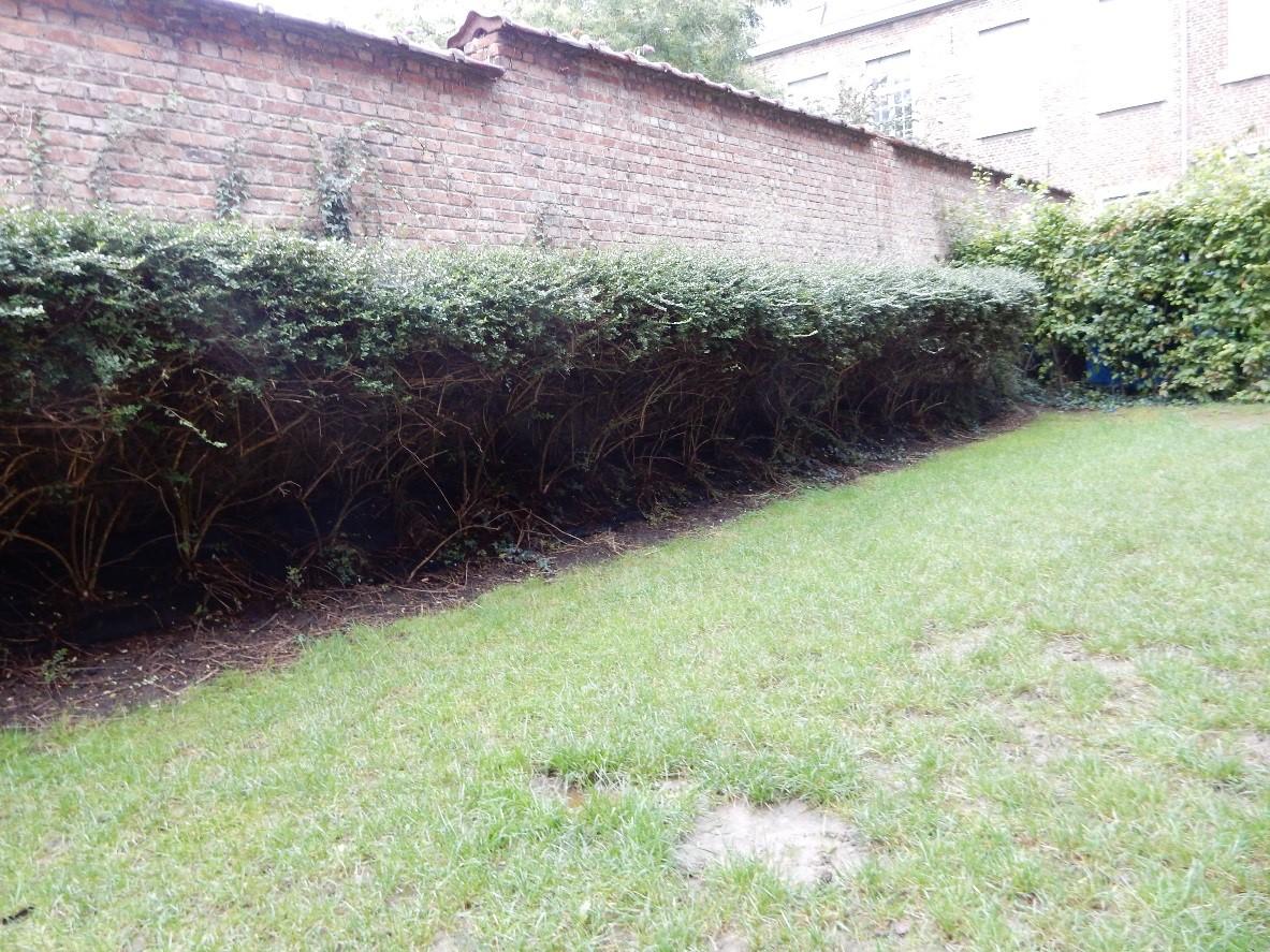 tuin BR voor de werken 1